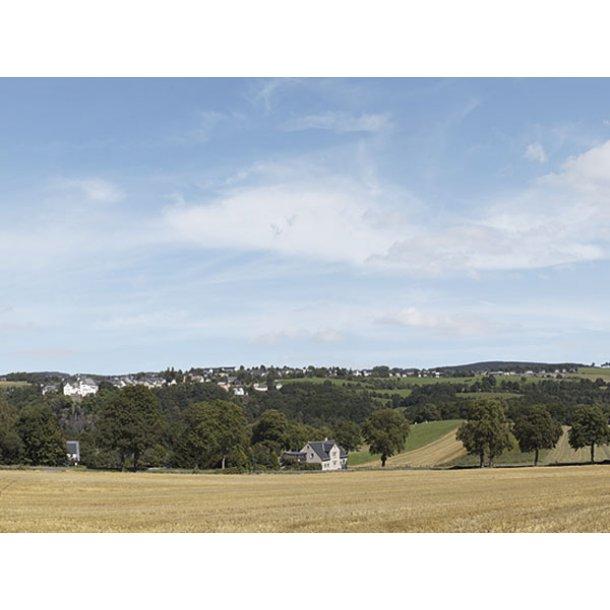 Auhagen HO/TT 42513 baggrunds billed Erzgebirge 1 samlet længde 279 cm.